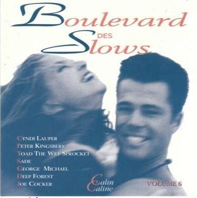 Boulevard des slows - vol.6 / Patricia Kaas, Jean-Jacques Goldman, James Brown, Terence Trent d' Arby, Martika | Kaas, Patricia. Interprète