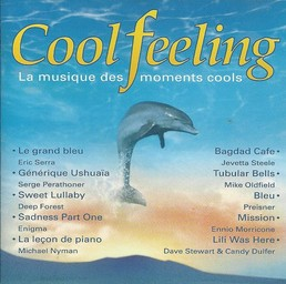 Cool Feeling : la musique des moments cools / Eric Serra | Serra, Eric. Interprète