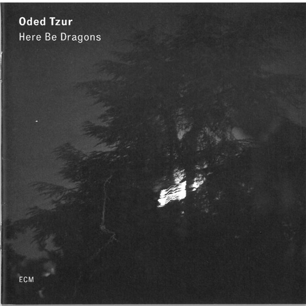 Here be dragons / Oded Tzur, saxophone ténor |